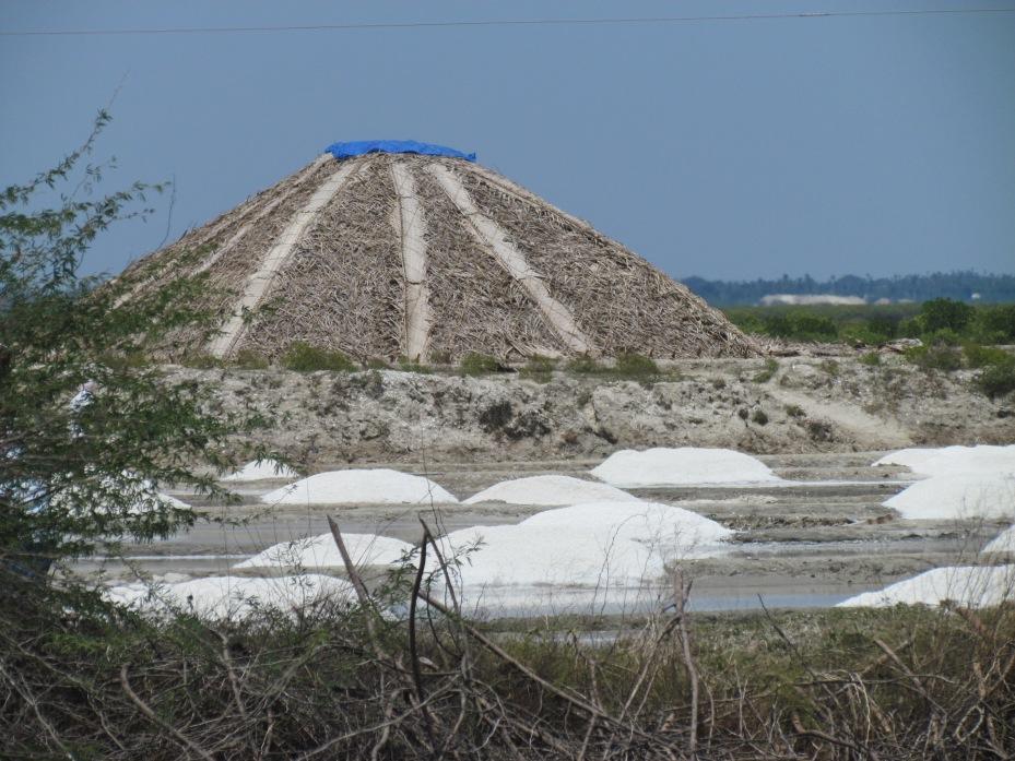 Salt dune